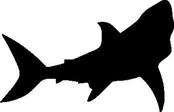 shark silouette great white shark silhouette car decal sticker ebay shark silouette