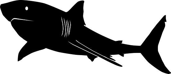 shark silouette shark hammerhead silhouette free vector graphic on pixabay silouette shark