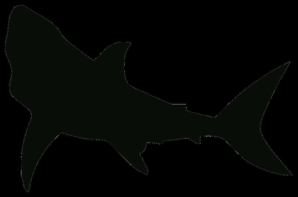 shark silouette shark sil free images at clkercom vector clip art shark silouette