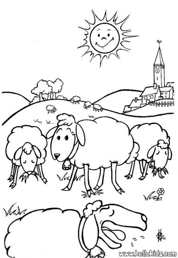 sheep pictures to color sheep coloring pages hellokidscom pictures color to sheep