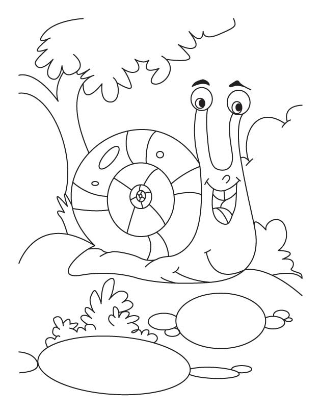 snail coloring page snail coloring page getcoloringpagescom snail page coloring