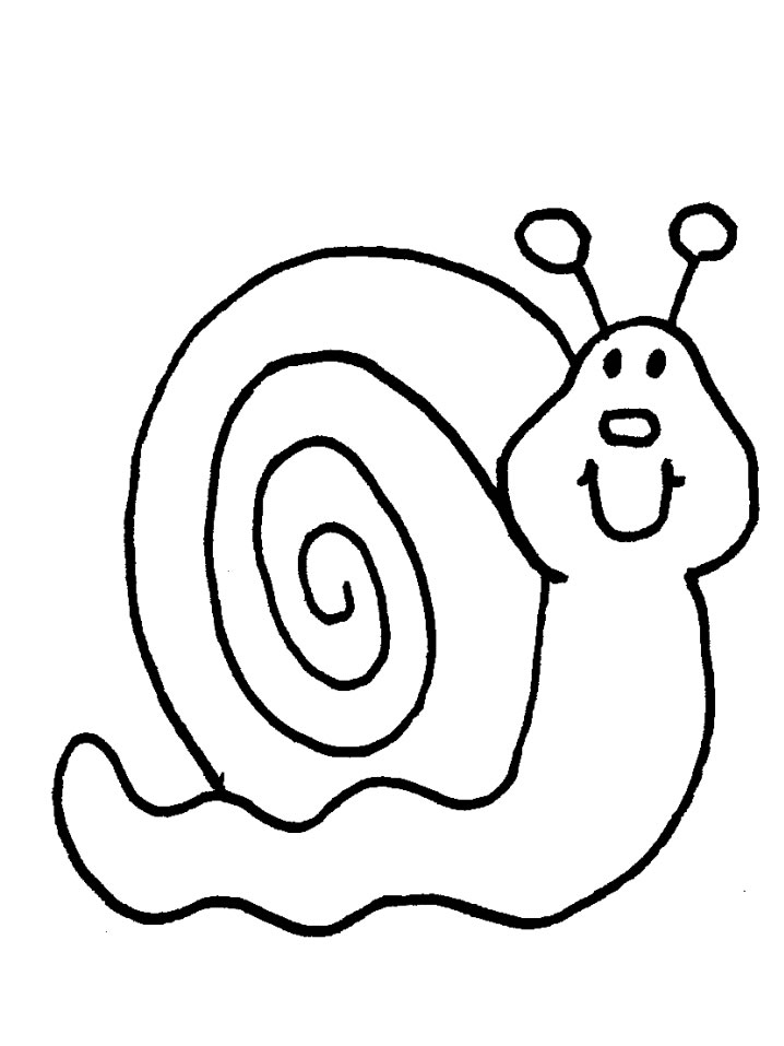 snail coloring page snail coloring pages animal pictures for kids snail coloring page