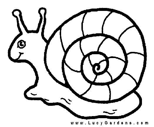 snail coloring page snail coloring pages coloringpages1001com page coloring snail