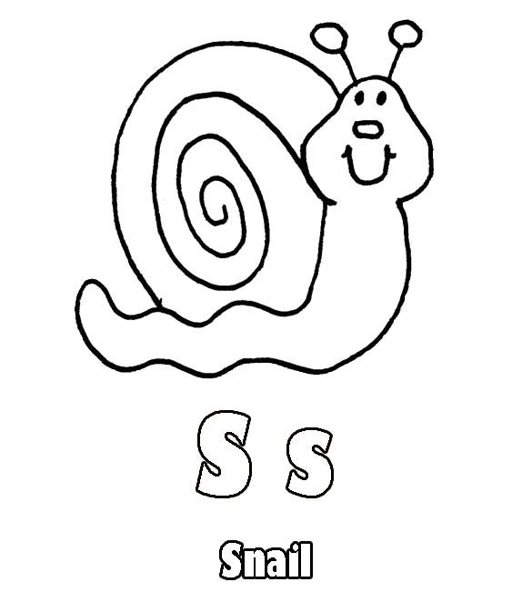 snail picture to colour cute snail animal snail to colour picture