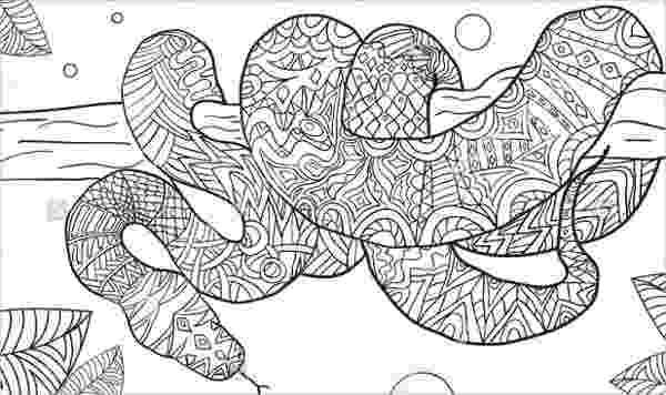 snake coloring page free printable snake coloring pages for kids page coloring snake