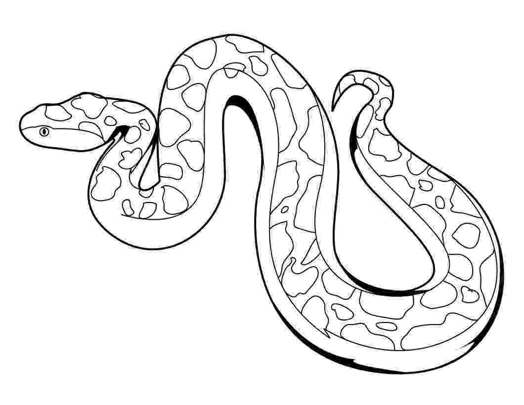 snake coloring page snake coloring pages getcoloringpagescom page snake coloring