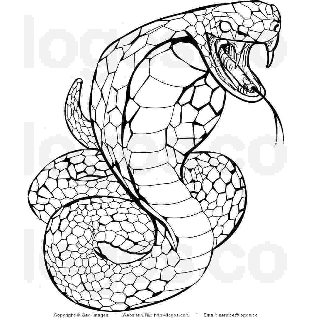 snakes colouring pages lena loves the king cobra snake pages snakes colouring