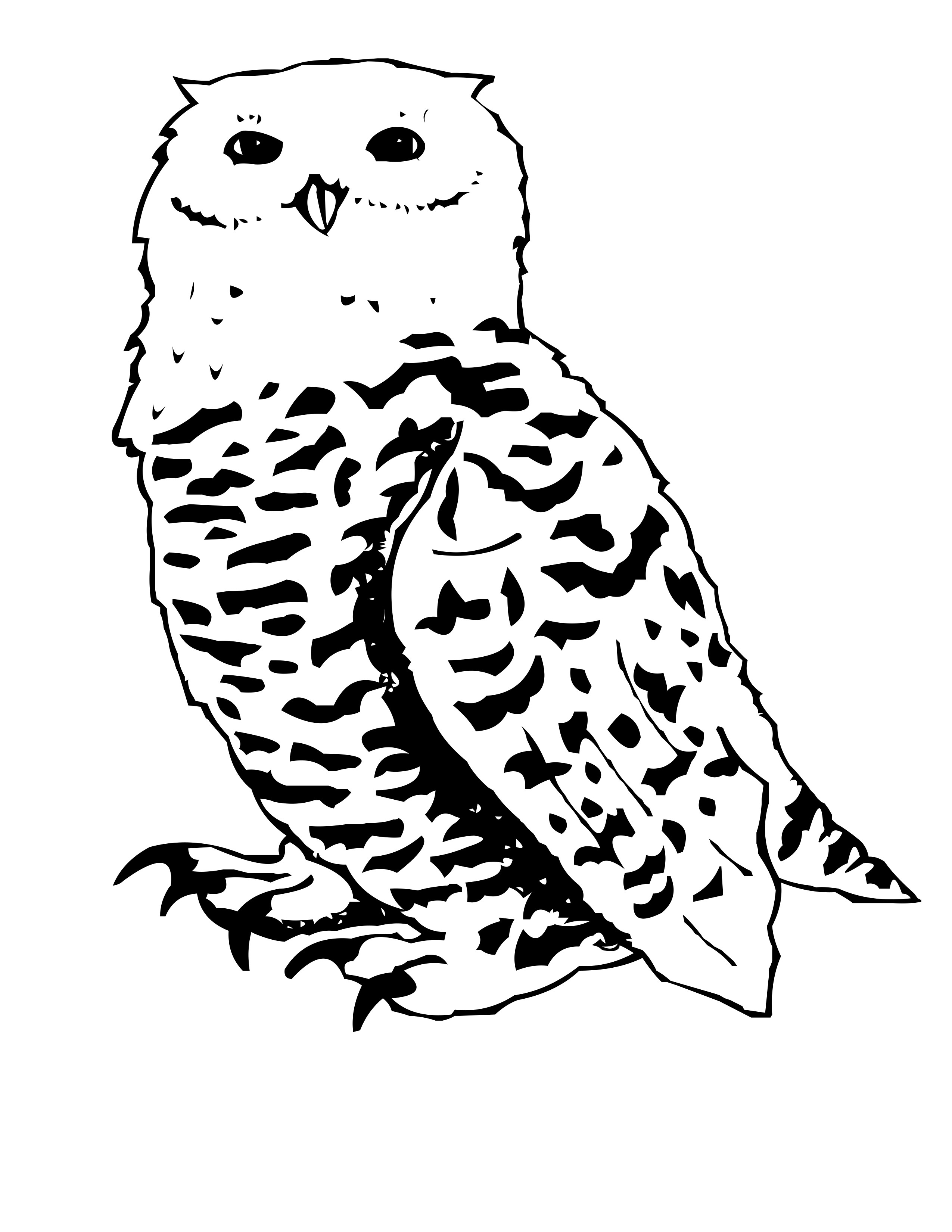 snowy owl coloring page arctic snowy owl coloring pages coloring pages page coloring snowy owl