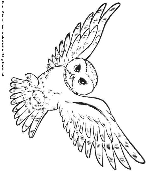 snowy owl coloring page bird coloring pages page snowy coloring owl