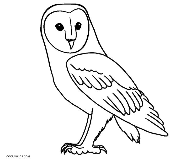 snowy owl coloring page free printable owl coloring pages for kids cool2bkids coloring snowy page owl