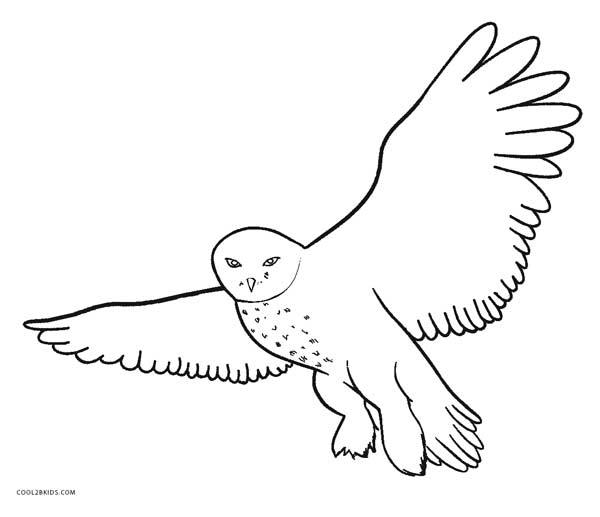 snowy owl coloring page snowy owl coloring pages coloring home coloring snowy owl page