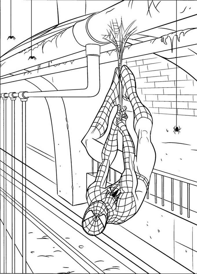spiderman coloring page 30 spiderman colouring pages printable colouring pages free premium templates spiderman coloring page