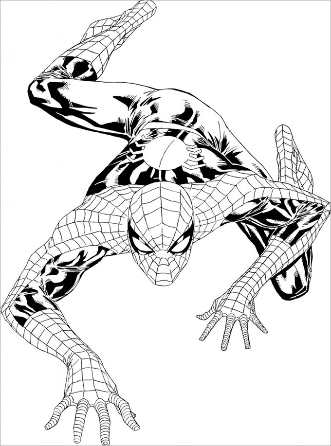 spiderman coloring page printable spiderman coloring pages for kids cool2bkids spiderman page coloring
