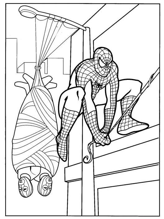 spiderman colouring pics free printable spiderman coloring pages for kids spiderman pics colouring
