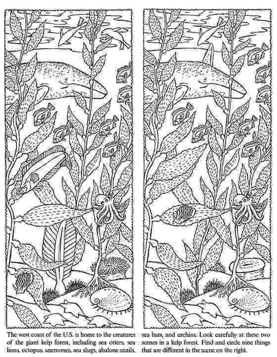 spot the difference puzzles to print spot the difference for kids coloring pages coloring for to spot puzzles the difference print