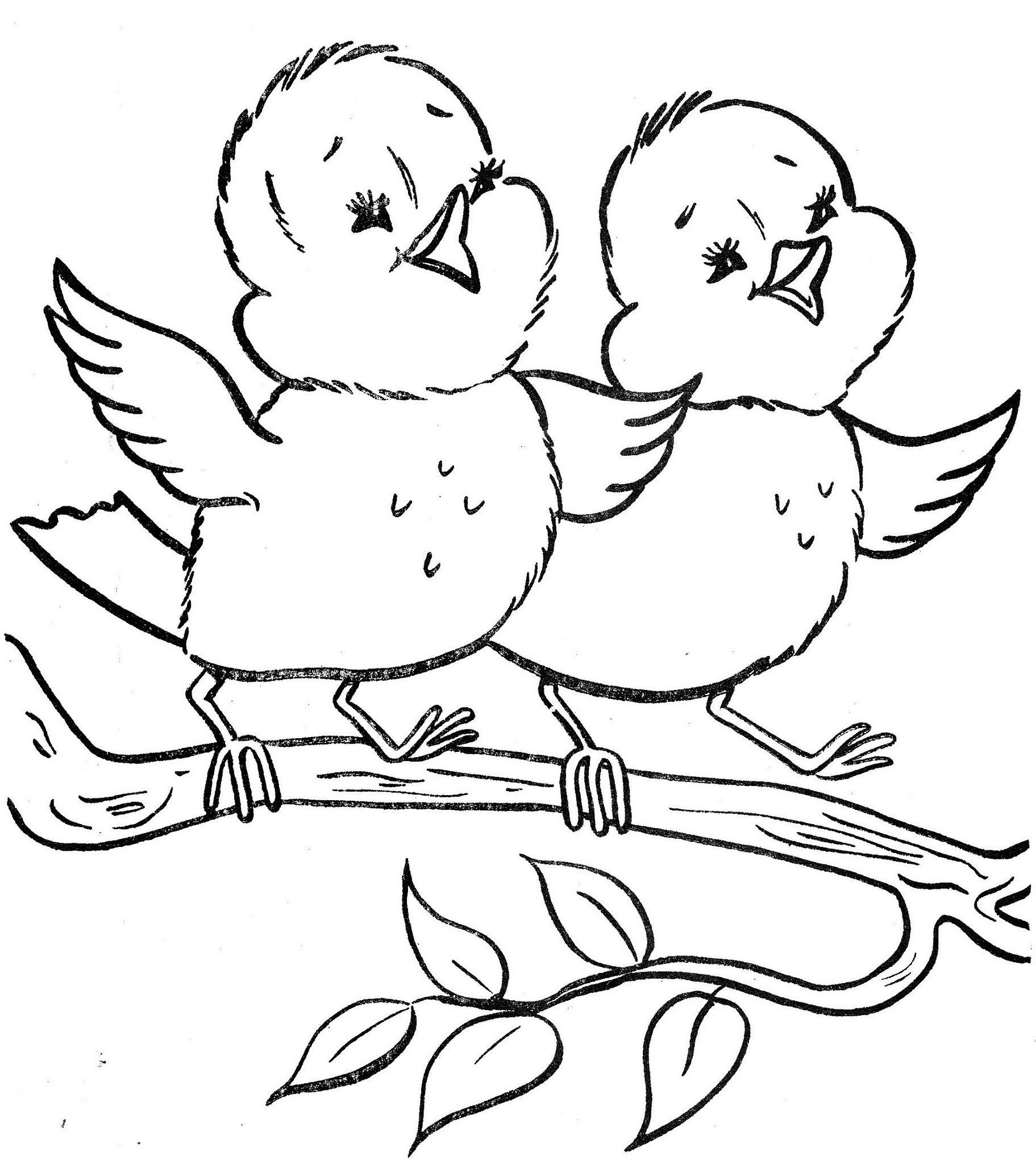 spring birds coloring pages رسومات للتلوين موقع المعلمة ألحان أبو الهيجا pages spring coloring birds