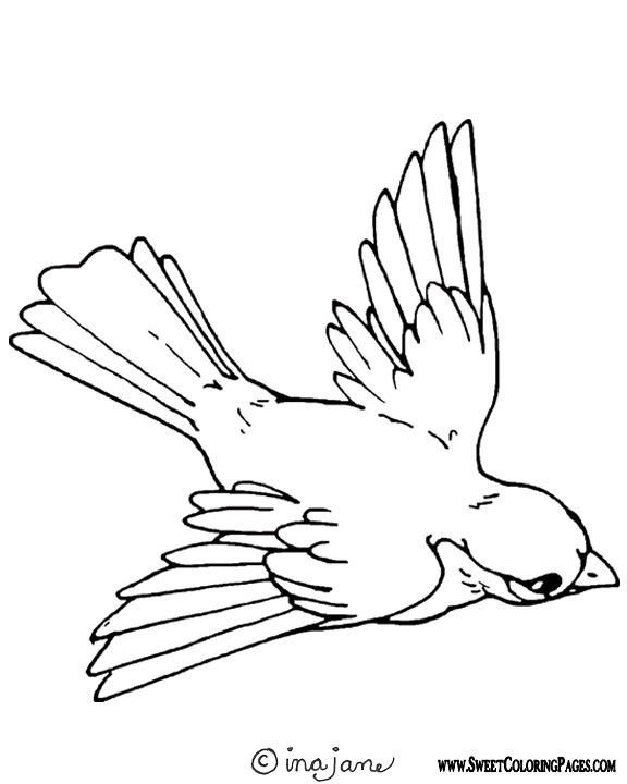 spring birds coloring pages 307 free printable spring coloring sheets for kids coloring pages birds spring