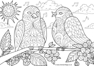 spring birds coloring pages bonnie a book to color birds template pinterest pages birds spring coloring