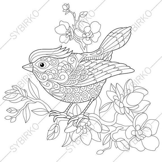 spring birds coloring pages country spring spring birds printable adult coloring spring coloring pages birds