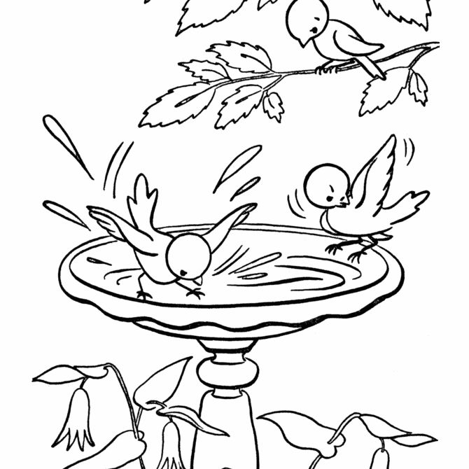 spring birds coloring pages spring colouring pages for kids coloring spring birds pages