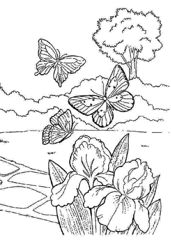 spring coloring pages birds and flowers spring coloring page favecraftscom pages spring coloring