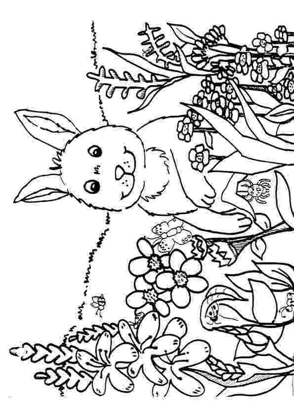 spring coloring pages printable spring coloring pages kindergarten coloring home spring pages coloring