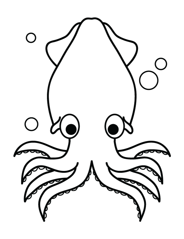 squid coloring pages squid coloring pages squid coloring pages