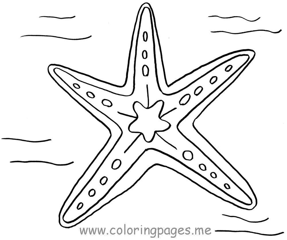 starfish to color printable coloring page sea ocean animals coloringsnet starfish to color