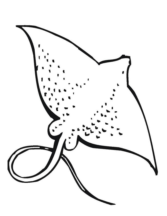 stingray colouring pages sea animal stingray coloring pages for kids colouring pages stingray