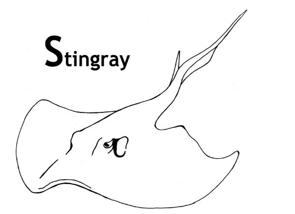 stingray colouring pages stingray coloring pages getcoloringpagescom pages stingray colouring