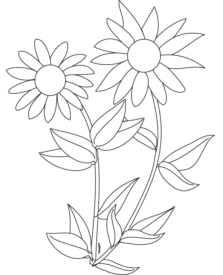 sunflower coloring pictures lovely sunflower plants coloring page coloring sky coloring sunflower pictures