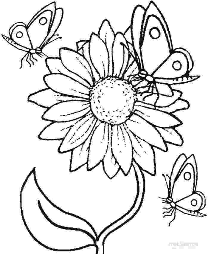 sunflower to color 67 best plant and flower coloring pages images on pinterest color to sunflower
