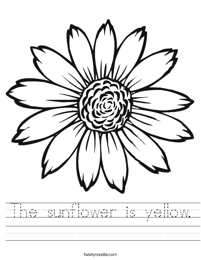 sunflower to color girasol flower drawing coloring pages embroidery patterns color to sunflower