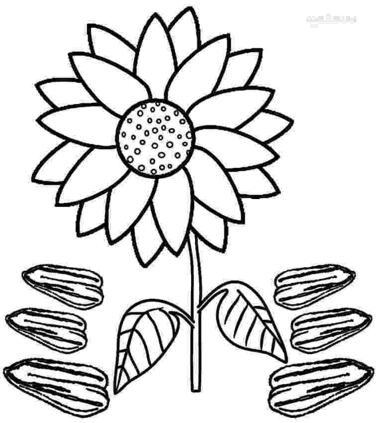 sunflower to color printable sunflower coloring pages for kids cool2bkids color sunflower to