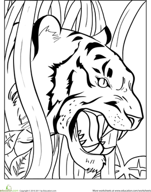 tiger coloring book pages angry tiger coloring pages wecoloringpagecom tiger book coloring pages