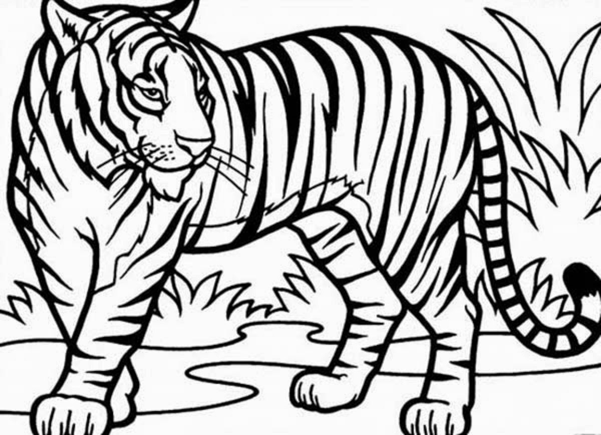 tiger coloring book pages tiger face coloring page tiger outline coloring pages tiger book coloring pages