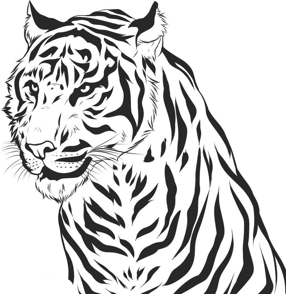 tiger coloring page free printable tiger coloring pages for kids coloring tiger page