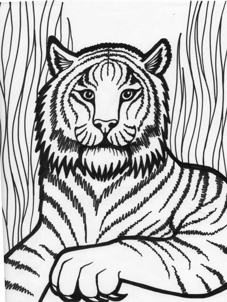 tiger coloring page free printable tiger coloring pages for kids page coloring tiger