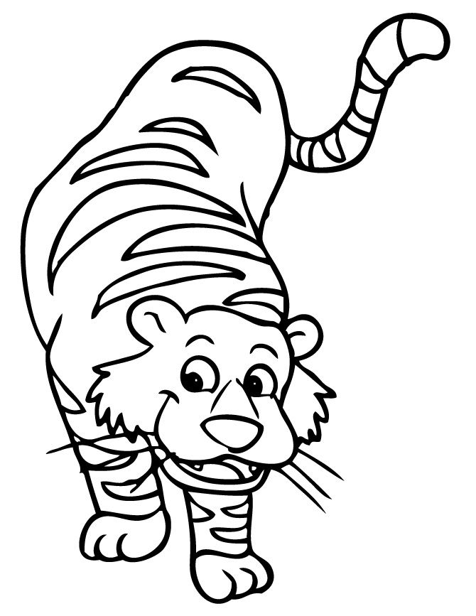 tiger images for colouring free printable tiger coloring pages for kids images tiger colouring for 1 1