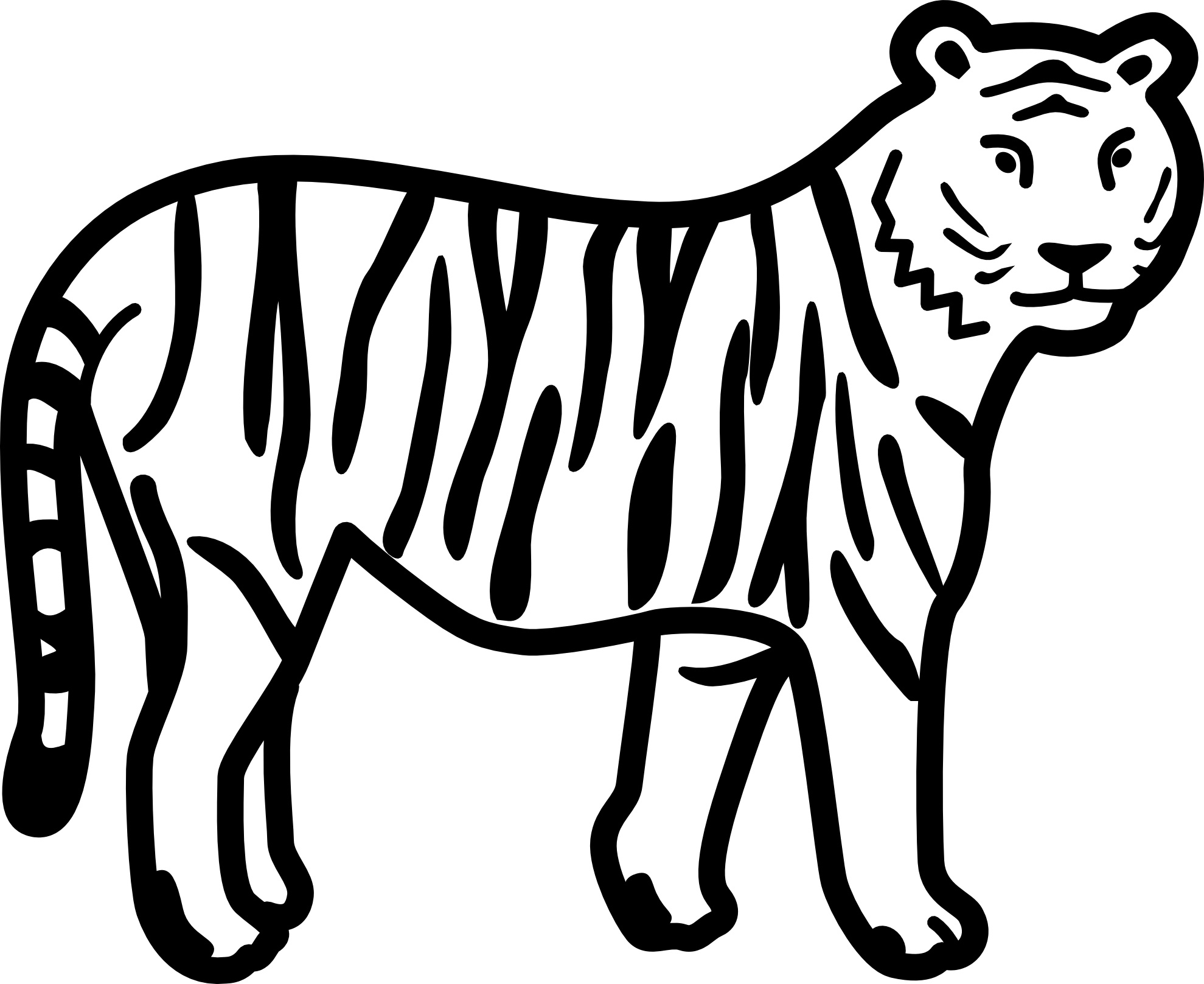 tiger images for colouring tiger print drawing at getdrawingscom free for personal images for colouring tiger