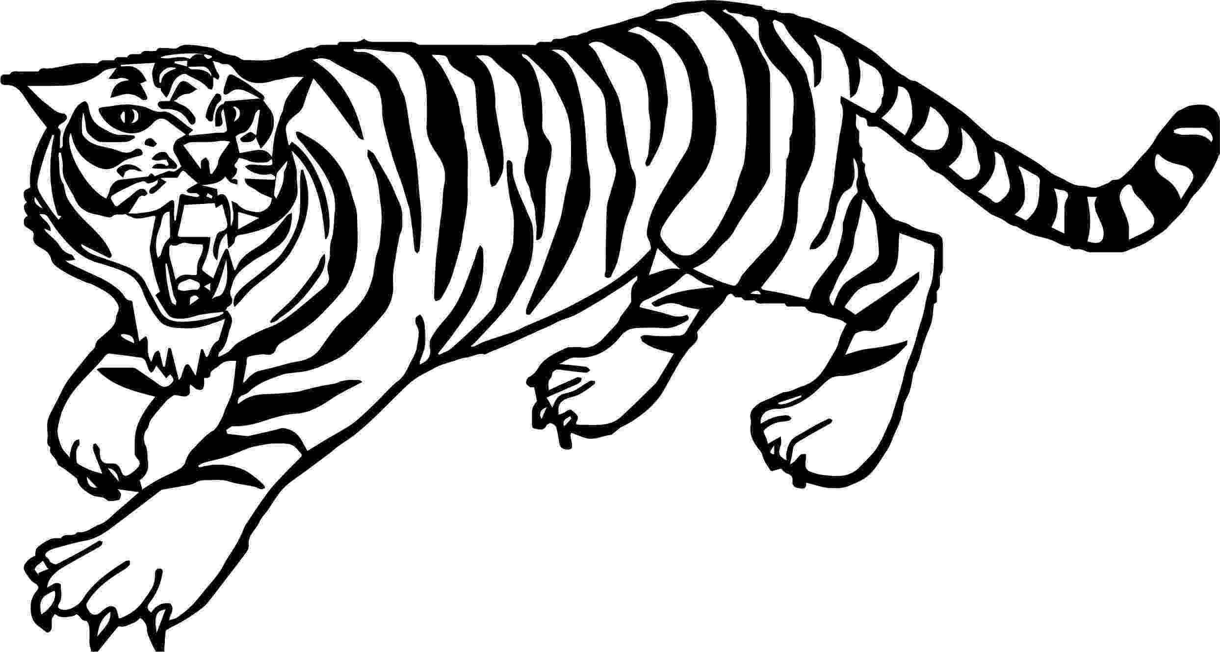 tiger to color kaplan kükreme boyama sayfası color to tiger