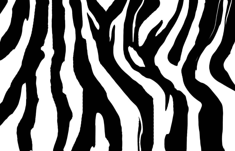 tiger without stripes tiger tempate animal templates templates templates tiger stripes without