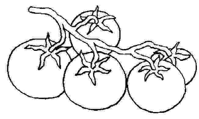 tomatoes coloring pages tomato behind the other tomato coloring page free pages coloring tomatoes