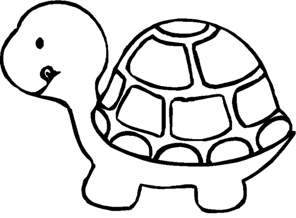 tortoise pictures to colour coloring a tortoise which goes in grass picture colour to tortoise pictures