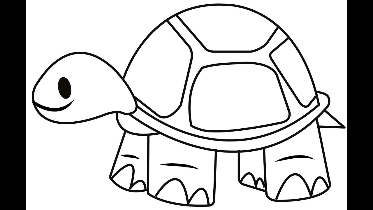 tortoise pictures to colour get this turtle coloring pages to print for kids aiwkr to colour pictures tortoise