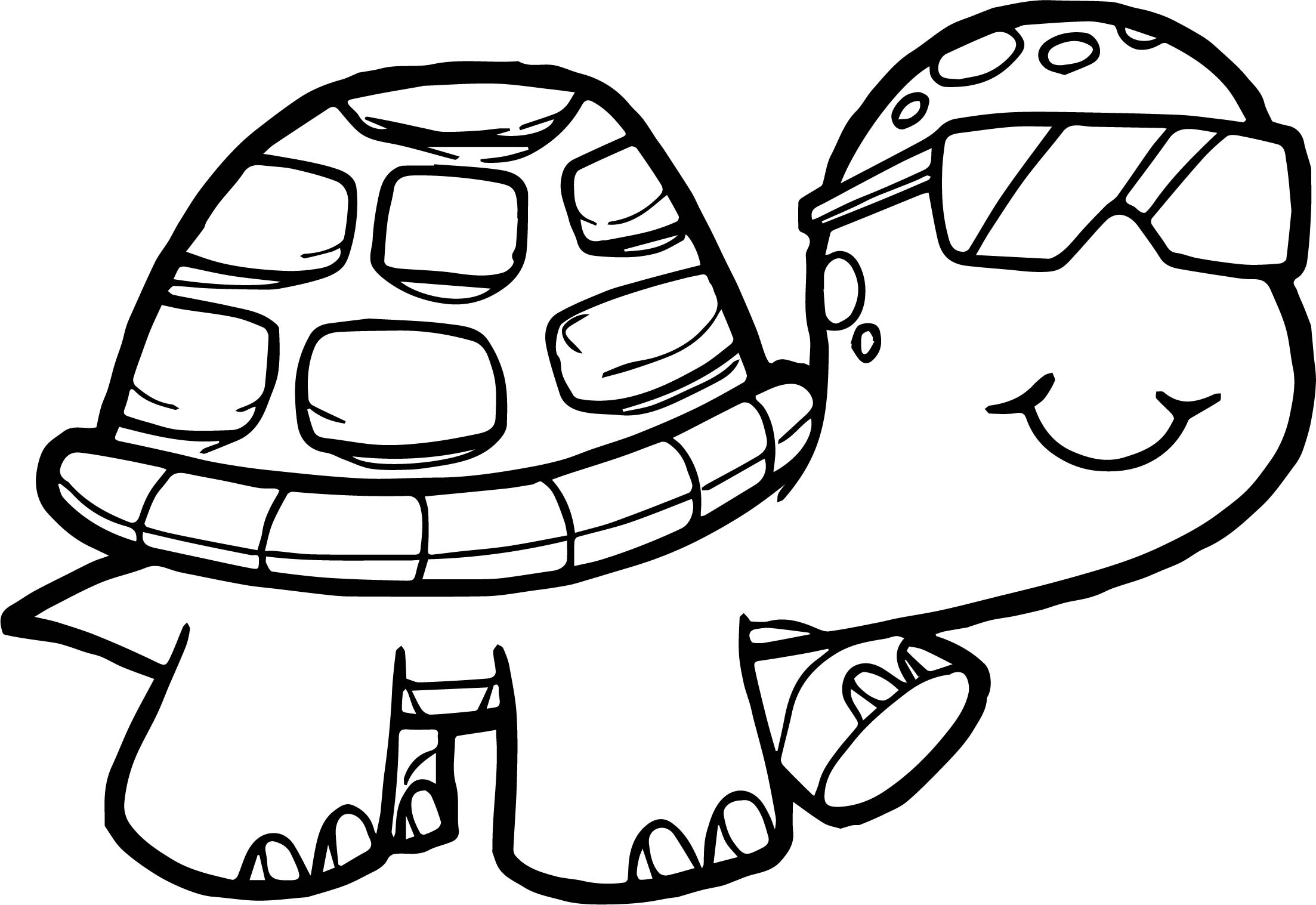 tortoise pictures to colour glasses tortoise turtle coloring page wecoloringpagecom to colour pictures tortoise