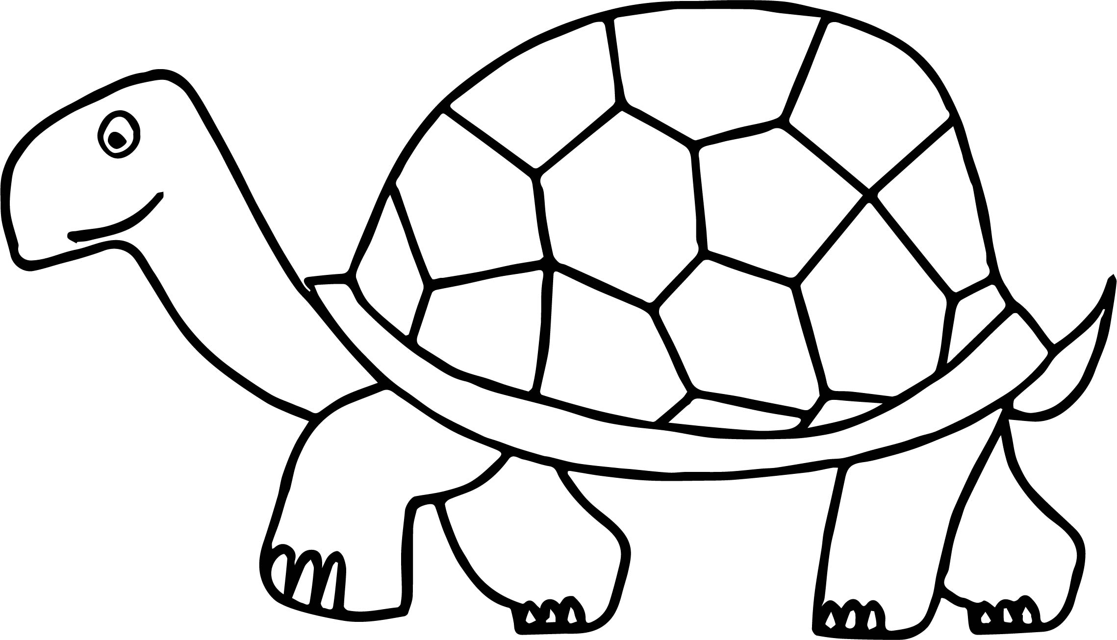 tortoise pictures to colour print download turtle coloring pages as the colour to tortoise pictures