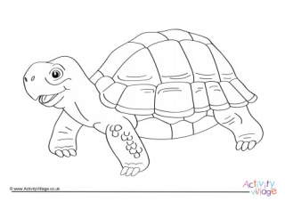 tortoise pictures to colour tortoise colouring page 5 colour pictures tortoise to