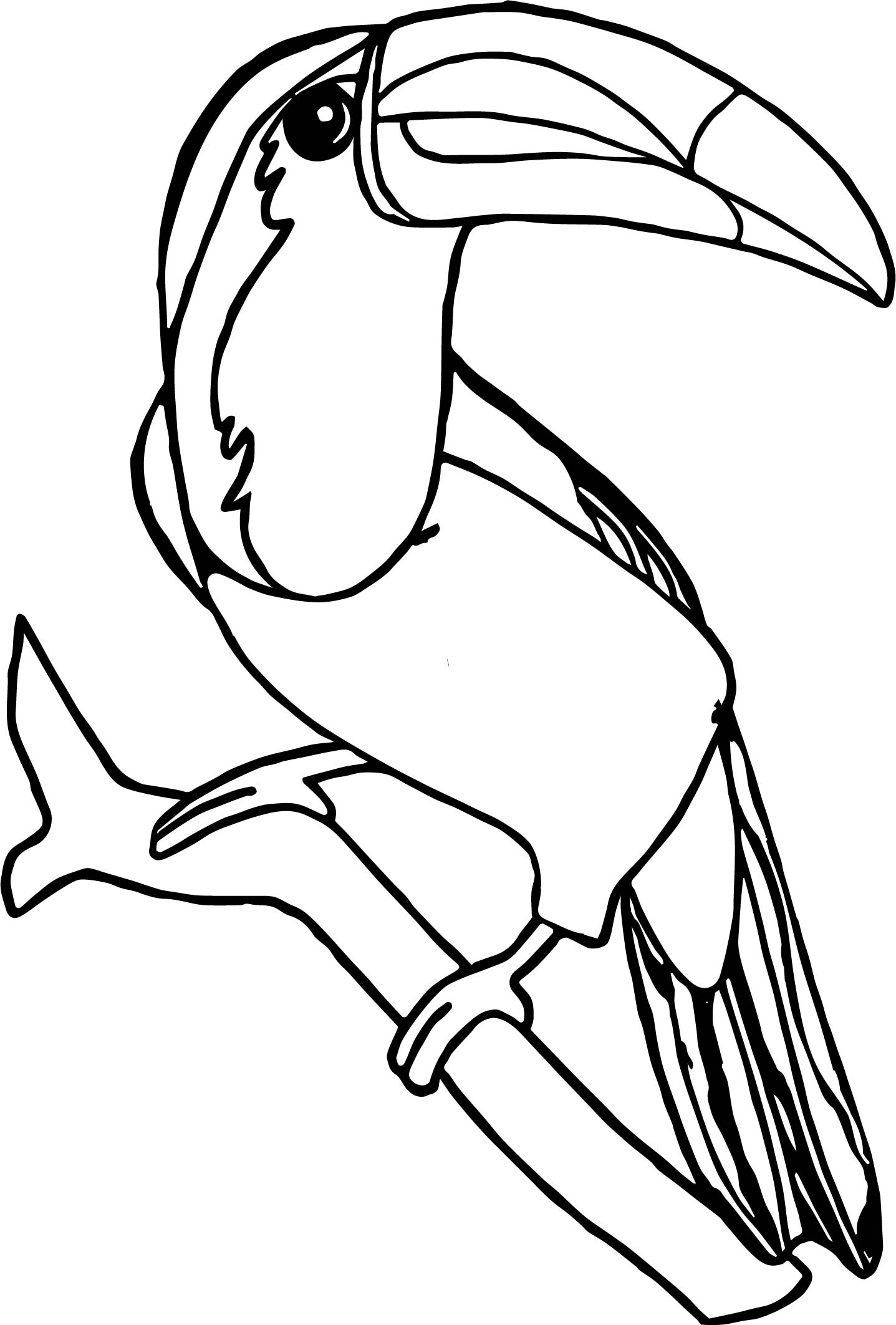 toucan pictures to print hey there i need ideas for my first tattoo yahoo answers toucan pictures print to