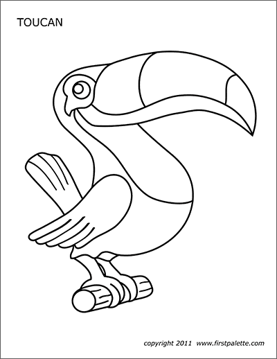 toucan pictures to print toucan coloring pages getcoloringpagescom to print pictures toucan